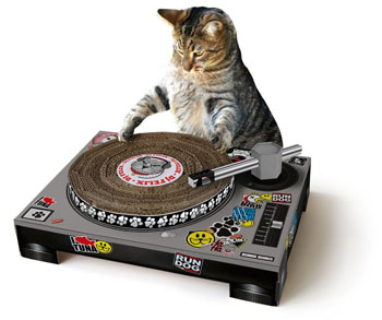 cat-turntable