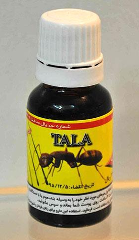 tala-ant-egg-oil