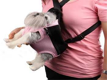 pet-carrier-2