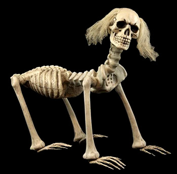 shadow-skeleton-dog