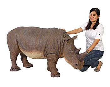 mini-rhino