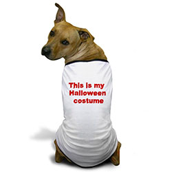 this-is-my-halloween-costume-4