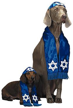 jewish-dog-costume