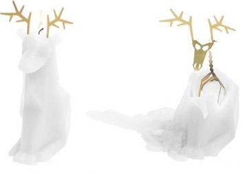 pyropet-dyri-skeleton-candle