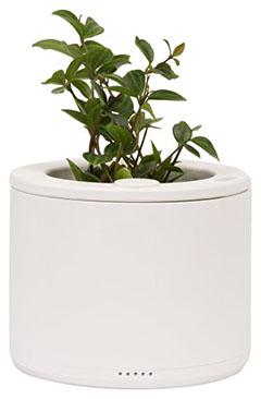 planty-wifi-flowerpot