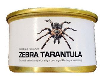 dehydrated-tarantula
