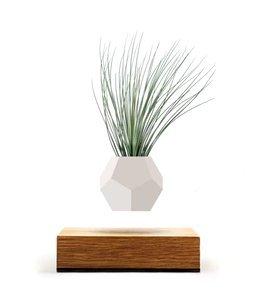zero-gravity-flowerpot