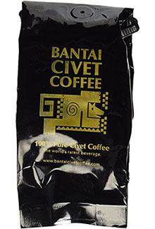 civet-coffee-kopi-luwak