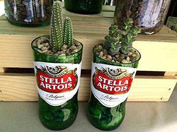 stella-artois-cactus-planter