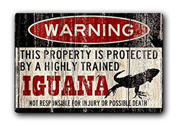iguana-warning-sign